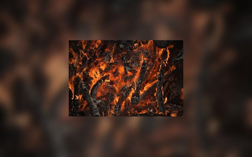 В Москве горел реставрационный центр Грабаря: погибли пожарные