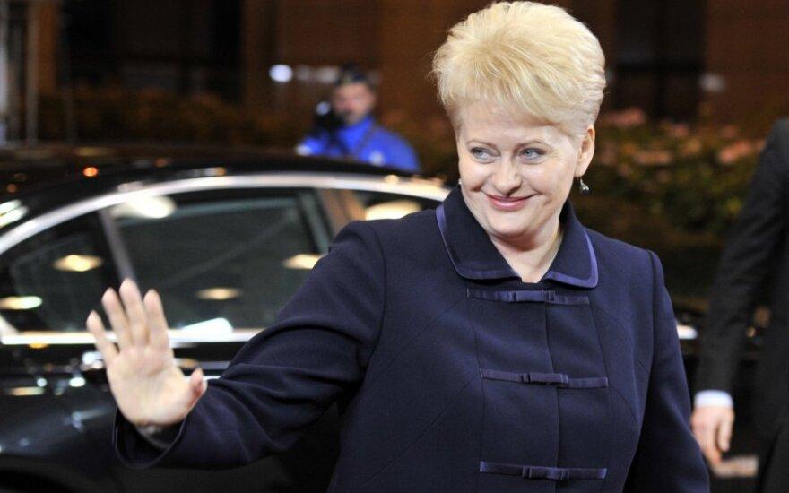 D.Grybauskaitė ES šalių vadovų susitikime