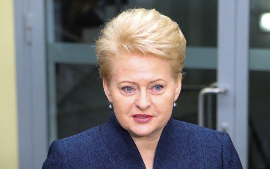 Президент Литвы предлагает обновить соглашение партий по внешней политике