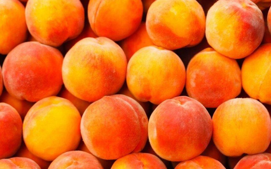 ВИДЕО: в Крыму бульдозер уничтожил 4 тонны персиков из Литвы