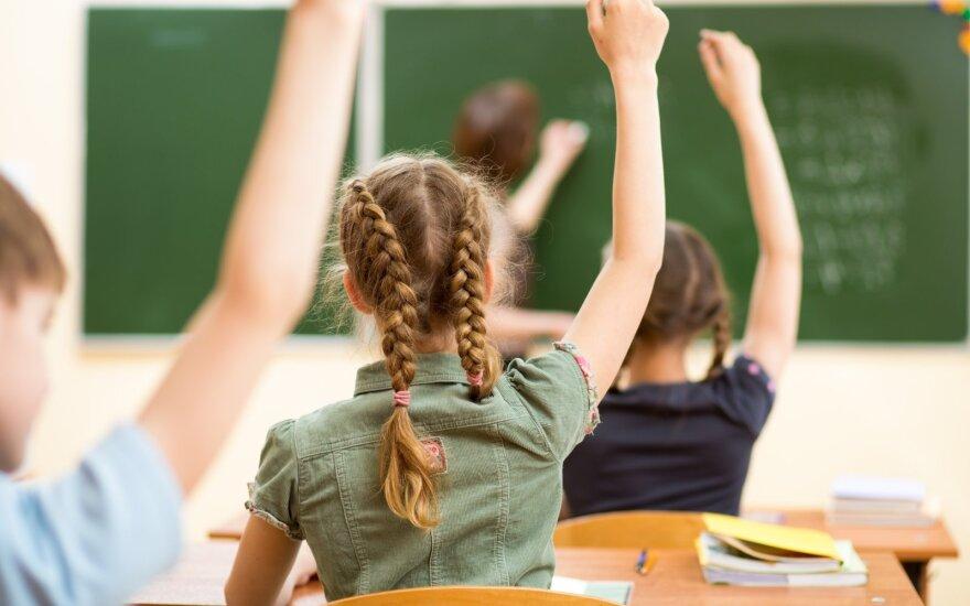 Находящиеся рядом школы разделяет пропасть: некоторые результаты поражают