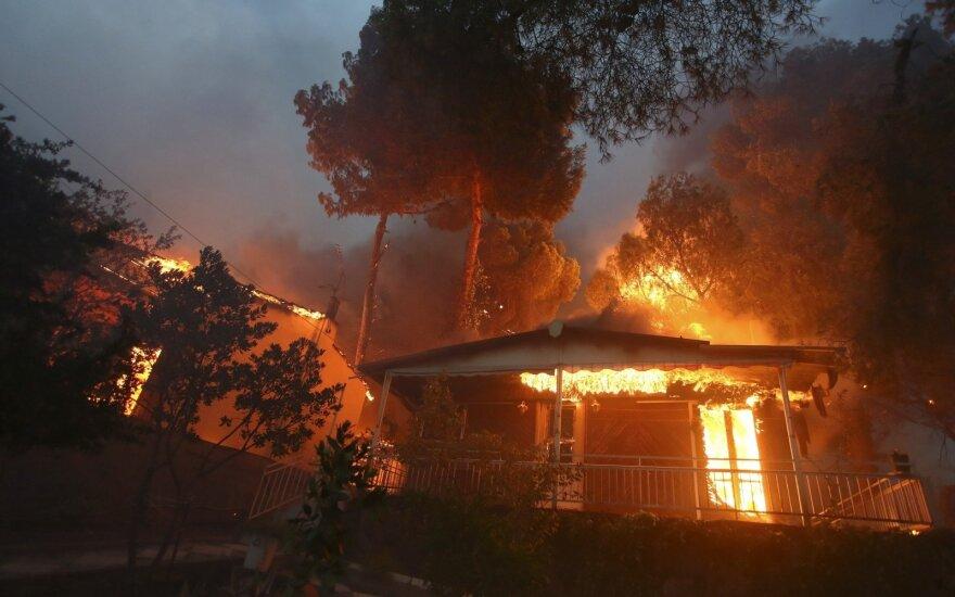 Пожары в Греции: власти подозревают поджог
