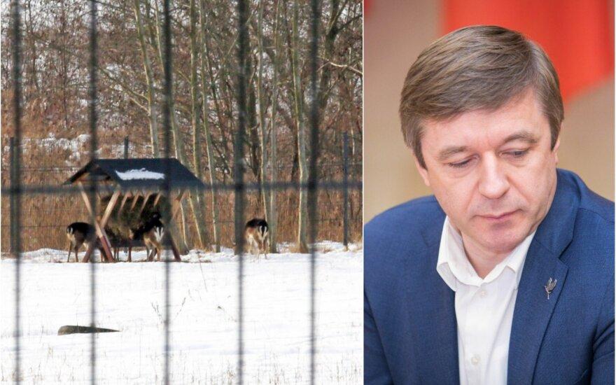 Prie Kauno marių aptvare laikomi danieliai ir R. Karbauskis