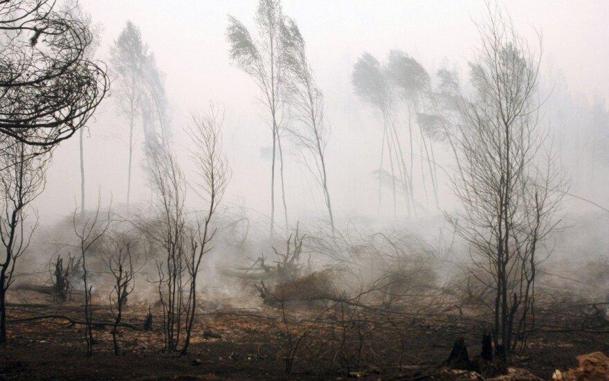 Šiuo metu yra didelis miško gaisrų pavojus