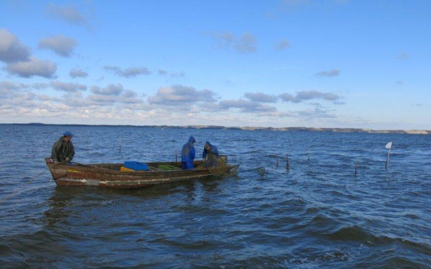 Žvejams mėgėjams numatyta leisti pagauti ne daugiau kaip  5 kg žuvies