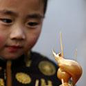 Vaikas laiko žiurkės formos rankų darbo saldainį. Kinijoje švenčiami Naujieji metai.