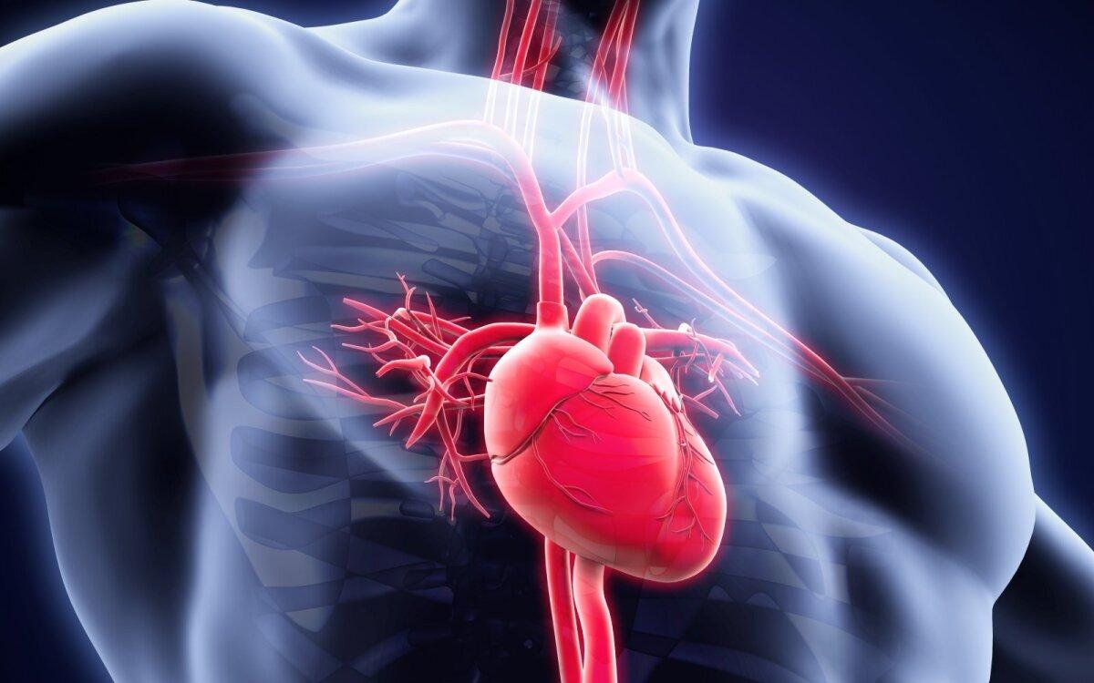 Hipertenzija ir hipertenzija - skirtumai