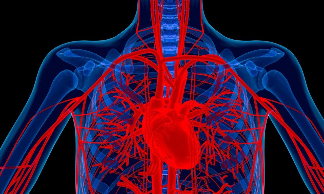 aortos aneurizmos hipertenzija