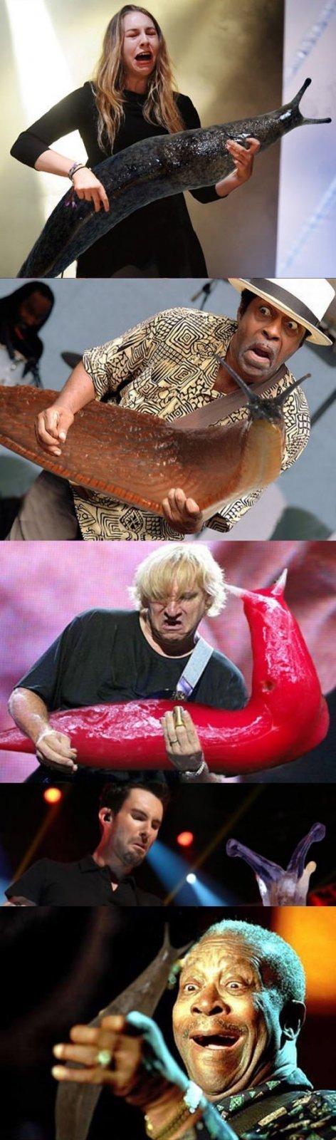 Ar pastebėjote, kad gitaristai atrodo lyg būtų supratę, jog rankose laiko šliužus?