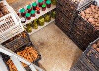 Rekomenduoja patyrę sodininkai: tokiomis sąlygomis daržovės išsilaiko ilgiausiai