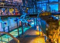 Atraskite Varšuvą: 3 muziejai, kuriuose verta bent kartą apsilankyti