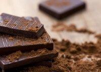 Kaip skiriama parama kepyklėlėms, autoservisams ir šokolado gamybai