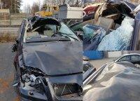 Užfiksavo šiurpų įvykį: kas nutinka, kai vairuotojas nespėja išvengti susidūrimo su briedžiu