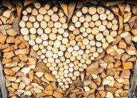 Šildymo sezonas prasideda – kiek šiemet kainuoja malkos