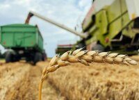Minister: direct EU payments to farmers should be capped at EUR 100,000
