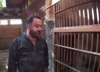 Liūtų ir tigrų globėjas iš Sirijos svajoja apie savą zoologijos sodą
