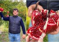 Ūkininkas iš Italijos parodė, kaip reikia valgyti granatą: iki šiol tai darėte neteisingai
