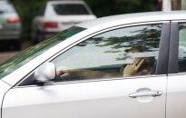 Telefono ryšio blokatoriai traukia nusikaltėlius: naudojami ne tik grobiant automobilius