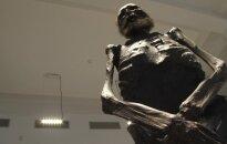 Mokslininkai ketina atskleisti VU Medicinos fakultete saugomos mumijos paslaptis