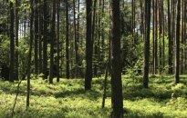 Kelionės į gamtą pavojai: eismui nepritaikytose vietose gali negalioti draudimas