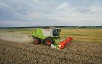 Sumažėjo grūdų derlius Lietuvoje