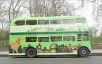 Šuniško gyvenimo grožybės: K9 autobusu keliaujantys keturkojai susipažįsta su Londonu