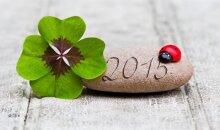 Kuriems Zodiako ženklams 2015 metai bus sėkmingi, o kuriems ne?