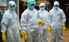 Prieš nemariuosius virusus – nauji ginklai