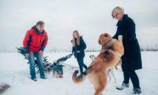 5 šunis auginanti šeima sulaukia ne tik palaikymo, bet ir kritikos