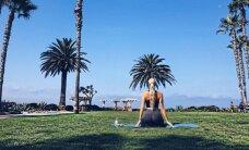 N. Šiaudikytei Los Andžele tenka mokytis muštis