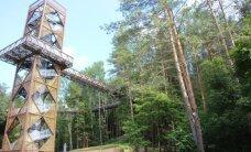 Neįprasta pramoga: pasivaikščiojimas medžių viršūnių takais