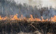 Žolės deginimo atmintinė: kas galima ir už ką gresia bauda?