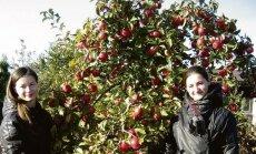 Monika ir Julija Rudvailių sode