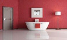 Ką pravartu žinoti apie vonią