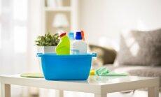 Šokiruojantis skirtumas: kiek laiko užimdavo namų tvarkymas praėjusio amžiaus viduryje ir dabar