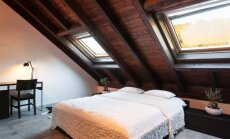 Rudens spalvų žaismas modernaus stiliaus bute