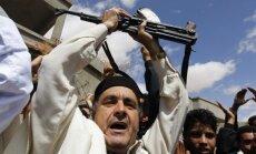 Libijos režimo pajėgos ir rėmėjai