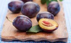 Ką svarbu žinoti besiruošiantiems genėti slyvas, trešnes, vyšnias ir persikus