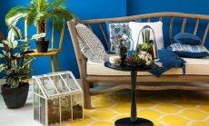 Kaip išsirinkti ne tik akims, bet ir pėdoms malonų kilimą: interjero ekspertės patarimai