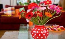 5 paprasti patarimai, kaip jaukiai įsirengti namus