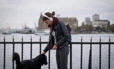 Šunys – kasdienis vaizdas