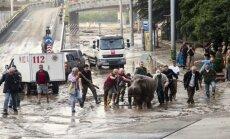 Tbilisio gatvėse blaškosi iš zoosodo ištrūkę žvėrys