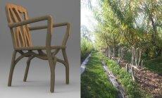 """<span style=""""color: #ff0000;"""">Neįtikėtina:</span> baldai, kurie užauga"""
