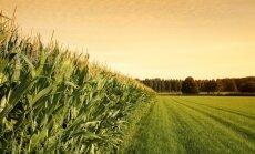 Ūkininkams bus skiriamos išmokos