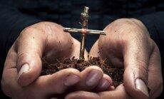 Sekmadienio Evangelija. Teisiojo paieška