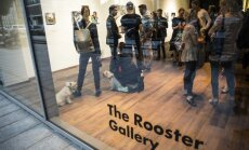 The Rooster Gallery