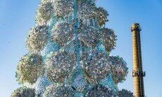 Netradicinė Kalėdų eglė Jonavoje