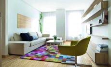 Nedidelio dviejų kambarių 50 kv.m buto Vilniuje sprendimai