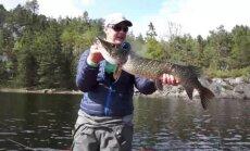 Vyro sugauta žuvis