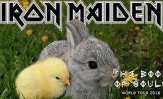 Iron Maiden troliai
